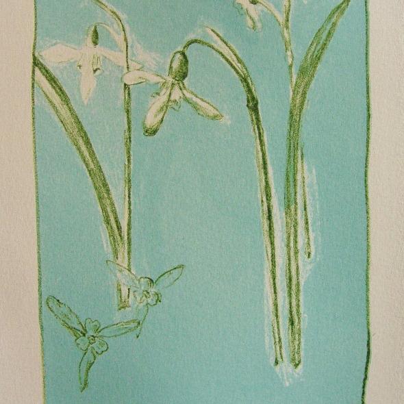 steendruk - sneeuwklokje 20 x 13 cm