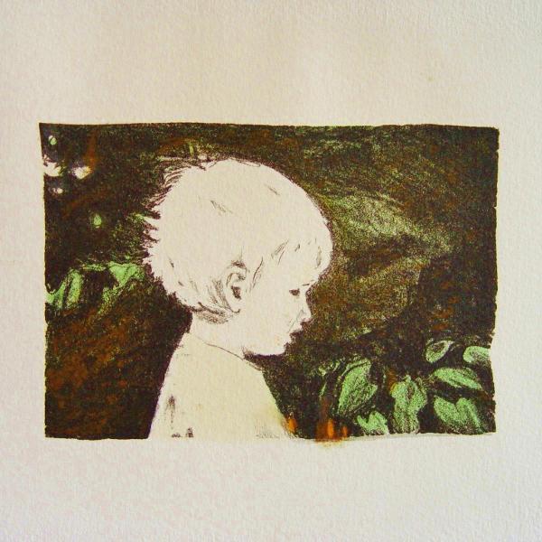 steendruk - Rein 10 x 15 cm